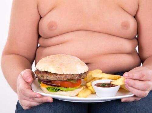Obesità: scoperta una proteina per bloccarla